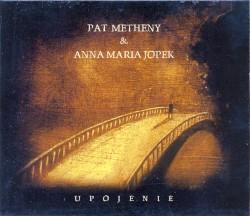 Pat Metheny - Tam, Gdzie Nie Siega Wzrok (Follow Me)